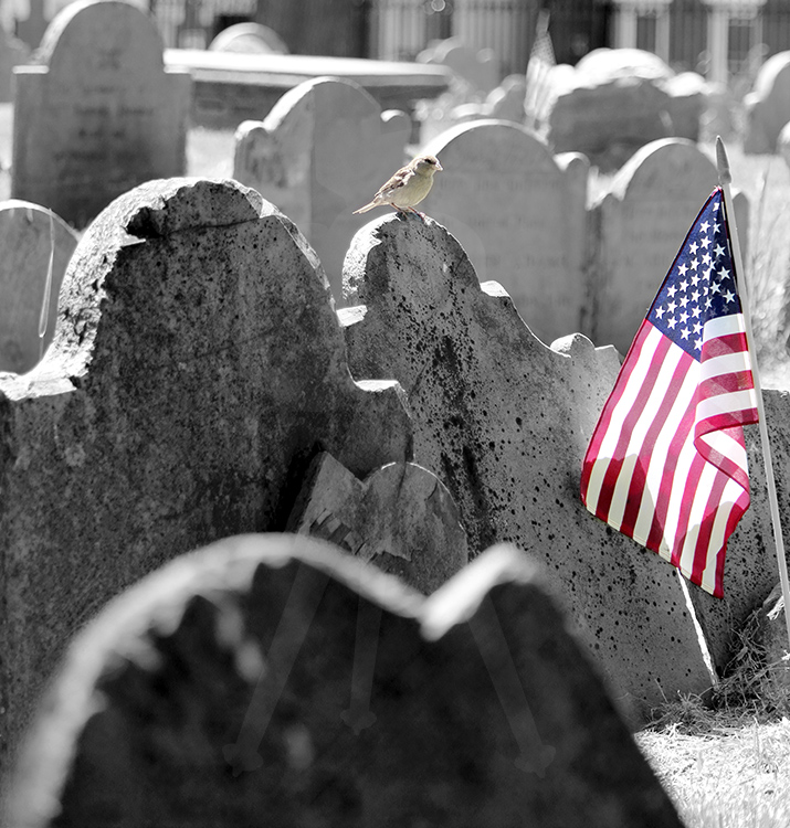 Boston Cemetery - Flag